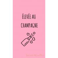 Fond d'écran élevée au champagne