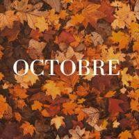 🍁OCTOBRE 🍁  Et voilà l'automne est bien installé 🌧️ et un peu trop rapidement à mon goût 😅  Un mois d'octobre qui s'annonce riche pour Sacré Rémois 🤞 Des nouveautés à venir prochainement 😉  Pour ce mois ci n'oubliez pas votre sweat (Sacré.e Rémois.e of course) et vos bottes de pluie 😝 _________________________________ #octobre #october #automne #autumn #pluie #plaid #botteencaoutchouc #sweatshirt