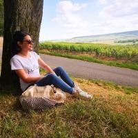 ☀️ Été 2020 ☀️  Pas de vacances cette année pour moi... je reste en Champagne 🥂.  De quoi (re)découvrir notre jolie région ! Et trouver des inspirations pour les futurs créations Sacré Rémois 👑  Faîtes-moi voyager avec vous, c'est quoi votre destination vacance ? 😁🏖️🏞️🍹 _________________________________ #sacreremois #sacreeremoise #sacrechampenois #sacreechampenoise #reims #remois #remoise #champenois #champenoise #champagne #createurremois #createurlocal #creatrice #créationoriginale #summer2020 #vacancesete #voyage